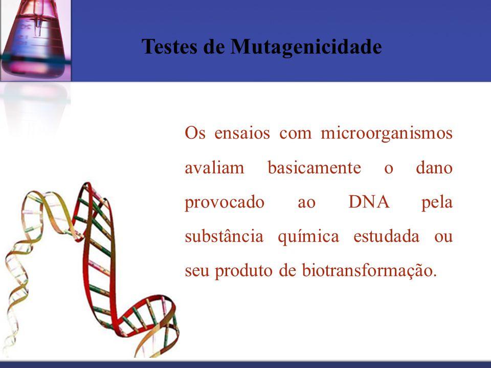 Testes de Mutagenicidade
