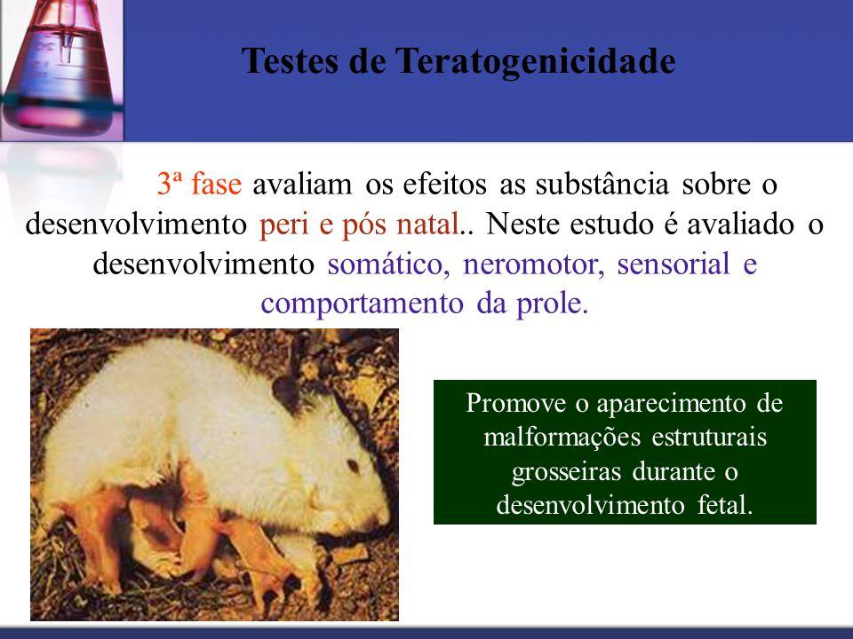 Testes de Teratogenicidade