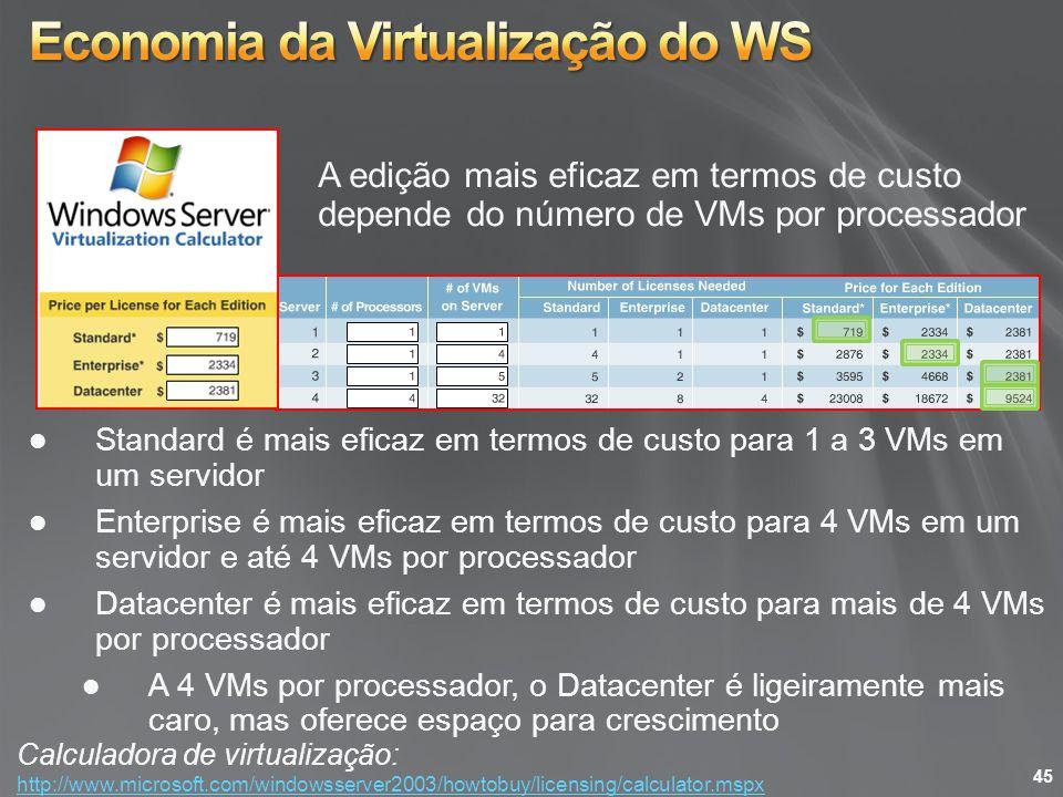 Economia da Virtualização do WS