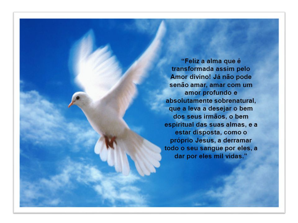 Feliz a alma que é transformada assim pelo Amor divino
