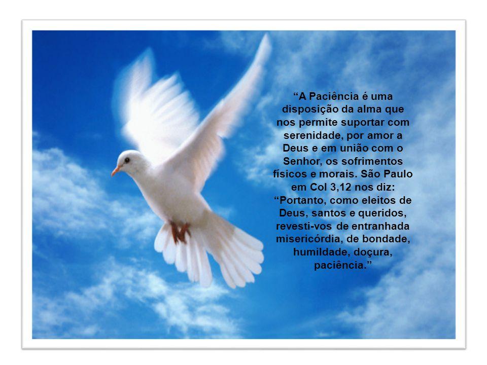 A Paciência é uma disposição da alma que nos permite suportar com serenidade, por amor a Deus e em união com o Senhor, os sofrimentos físicos e morais.