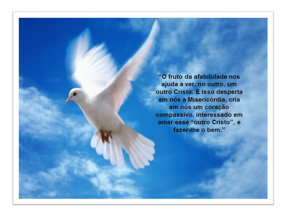 O fruto da afabilidade nos ajuda a ver, no outro, um outro Cristo