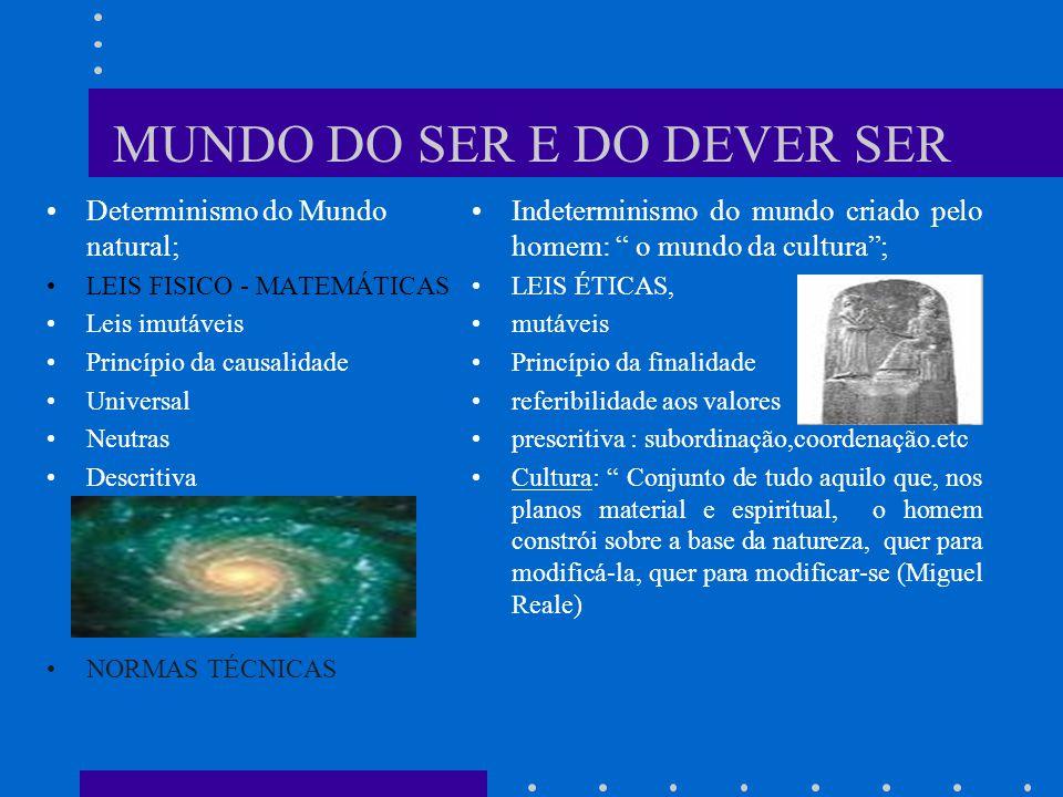 MUNDO DO SER E DO DEVER SER