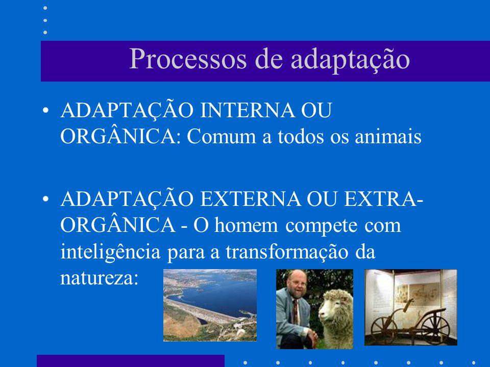 Processos de adaptação