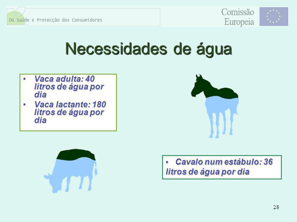 Necessidades de água Vaca adulta: 40 litros de água por dia