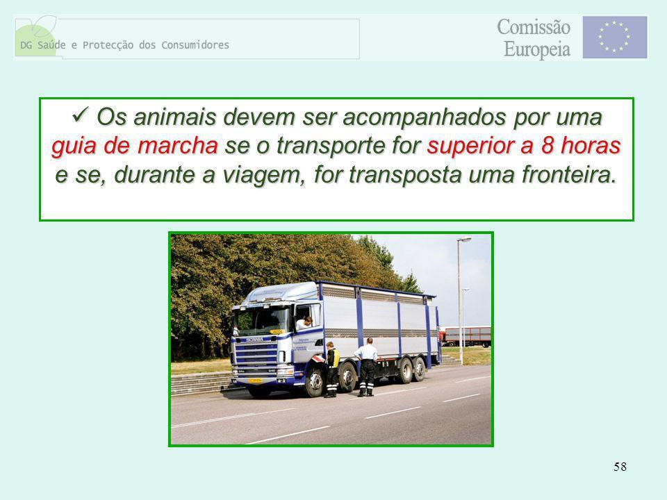 Os animais devem ser acompanhados por uma guia de marcha se o transporte for superior a 8 horas e se, durante a viagem, for transposta uma fronteira.