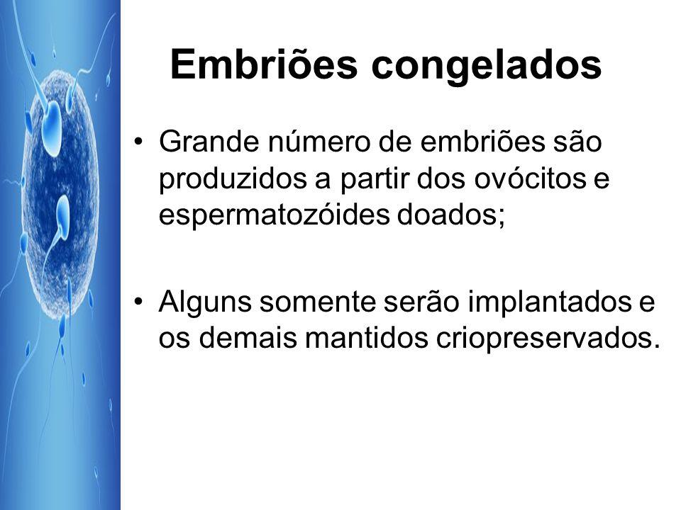 Embriões congelados Grande número de embriões são produzidos a partir dos ovócitos e espermatozóides doados;