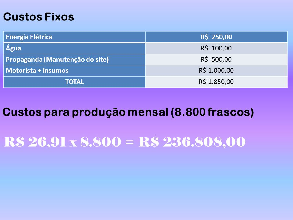 Custos Fixos Energia Elétrica. R$ 250,00. Água. R$ 100,00. Propaganda (Manutenção do site) R$ 500,00.