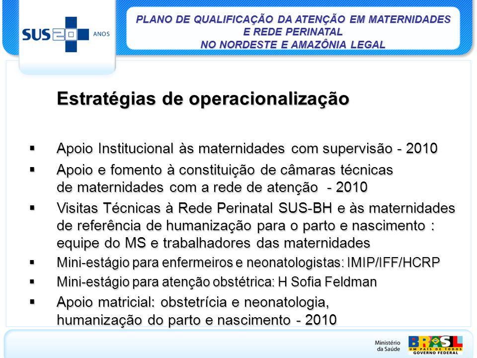 Apoio Institucional às maternidades com supervisão - 2010