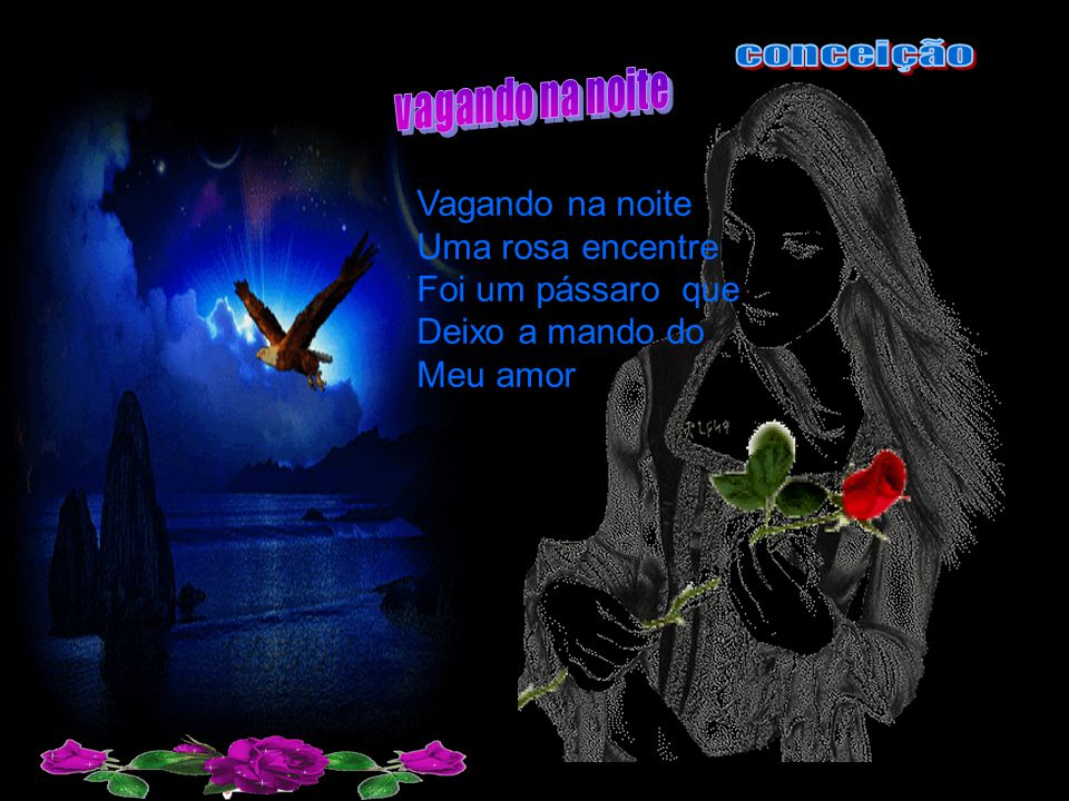 Vagando na noite Uma rosa encentre Foi um pássaro que Deixo a mando do