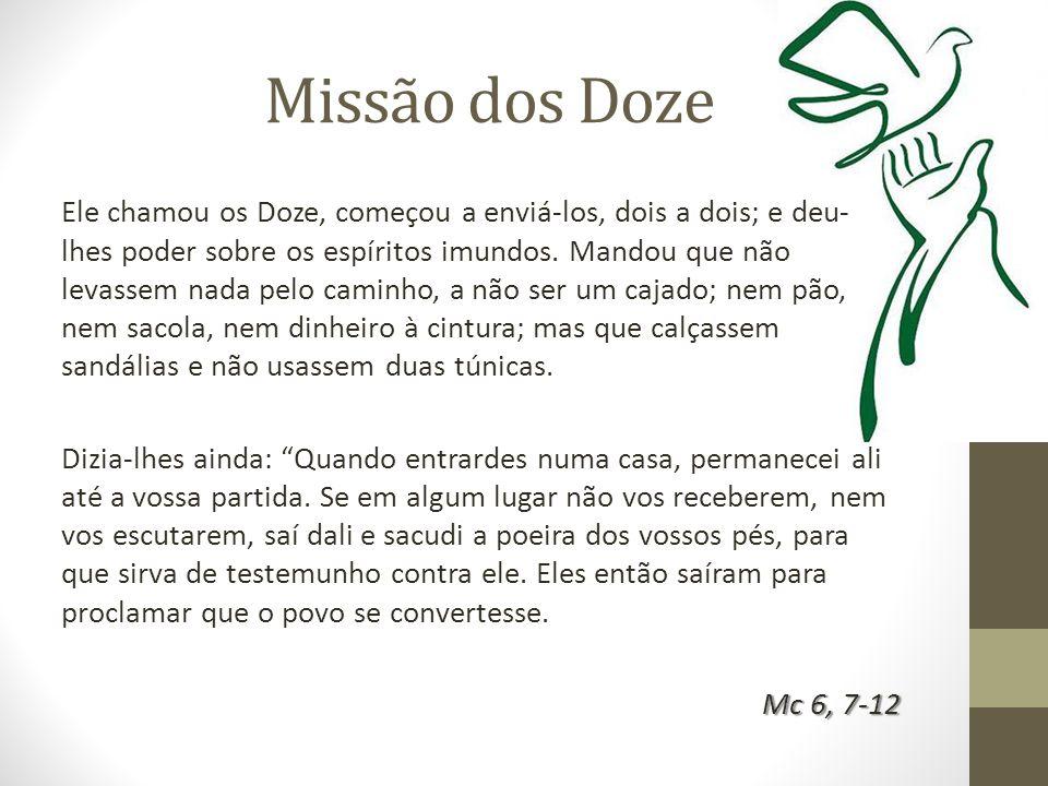 Missão dos Doze