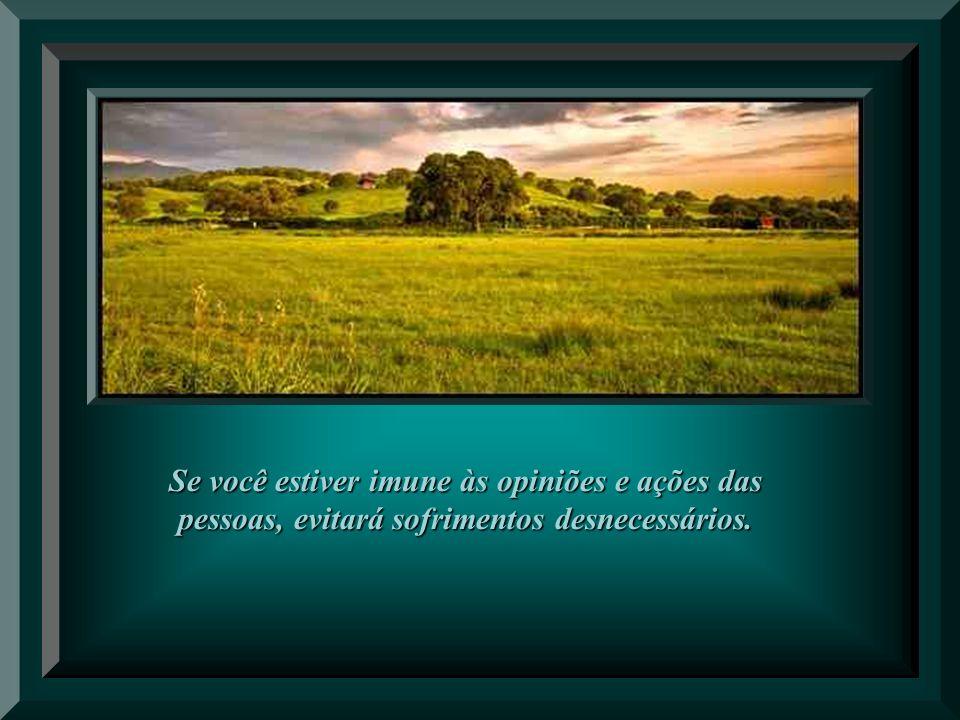 Se você estiver imune às opiniões e ações das pessoas, evitará sofrimentos desnecessários.