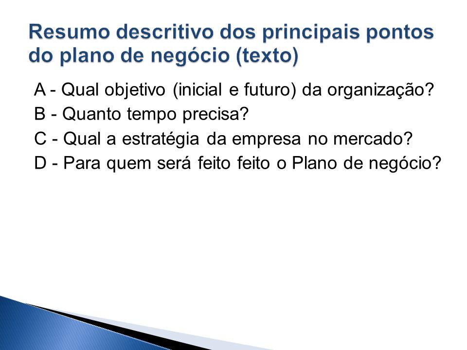 Resumo descritivo dos principais pontos do plano de negócio (texto)