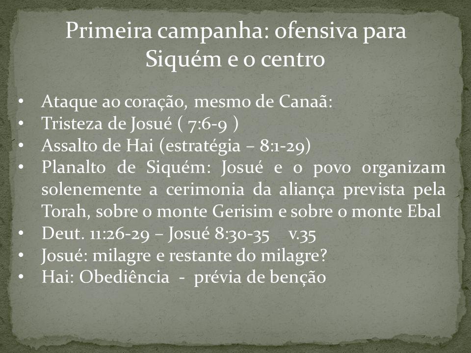 Primeira campanha: ofensiva para Siquém e o centro