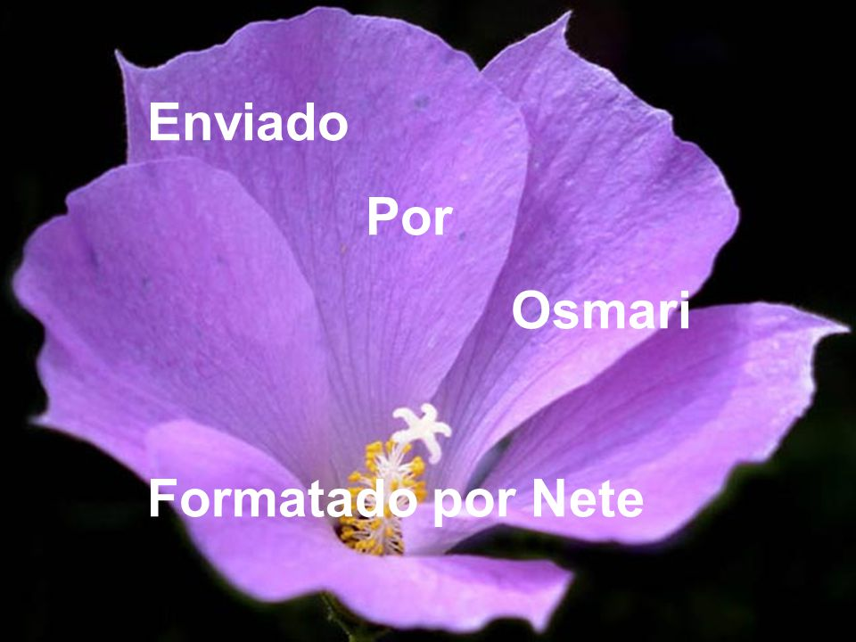 Enviado Por Osmari Formatado por Nete