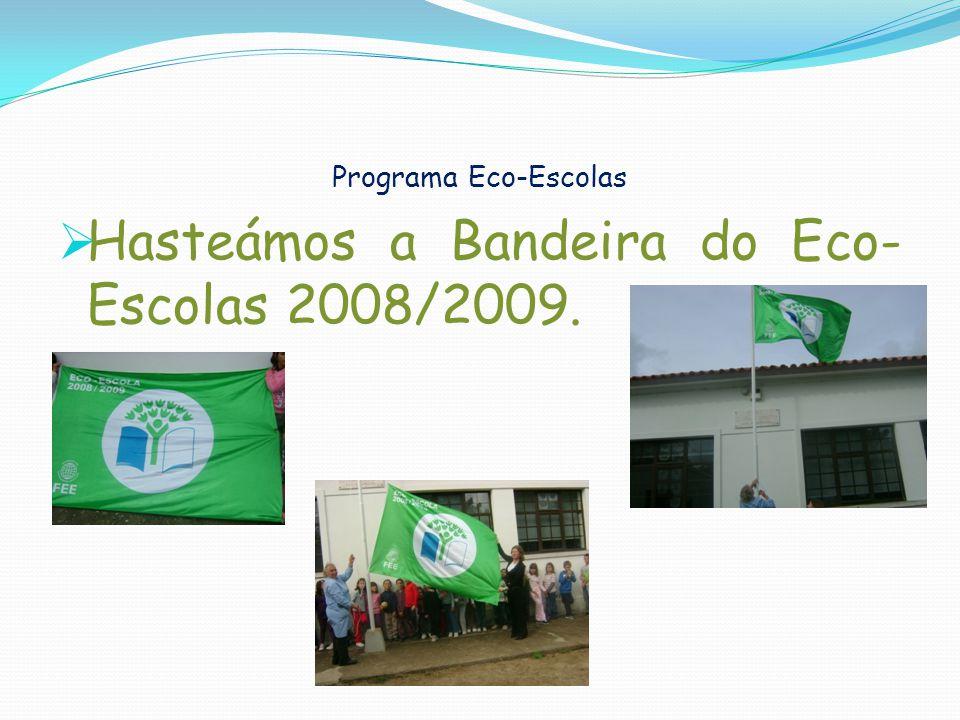 Hasteámos a Bandeira do Eco-Escolas 2008/2009.