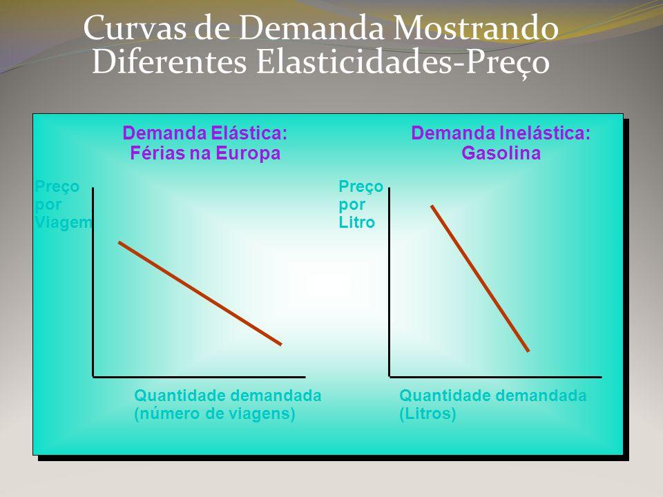 Demanda Elástica: Férias na Europa Demanda Inelástica: Gasolina