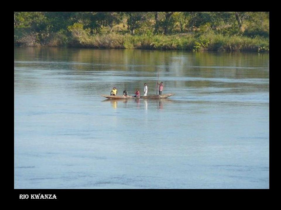 Rio Kwanzawanza Rio Kwanza