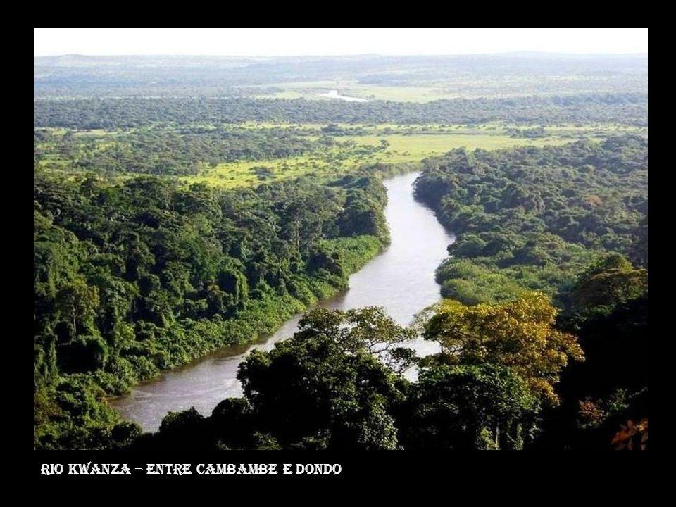 Rio Kwanza – entre cambambe e dondo