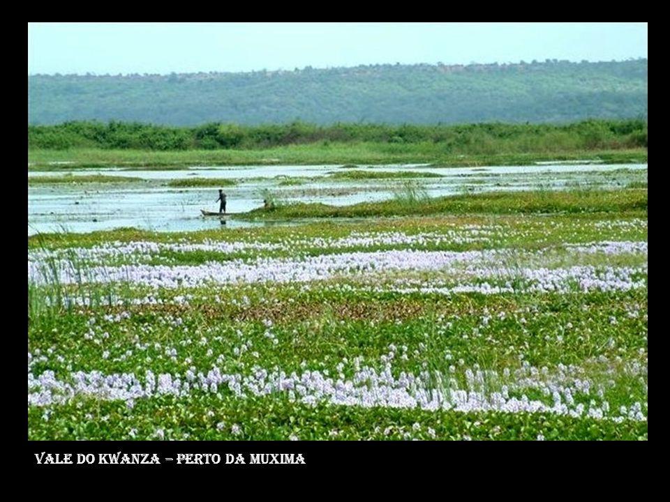 Vale do kwanza – perto da muxima