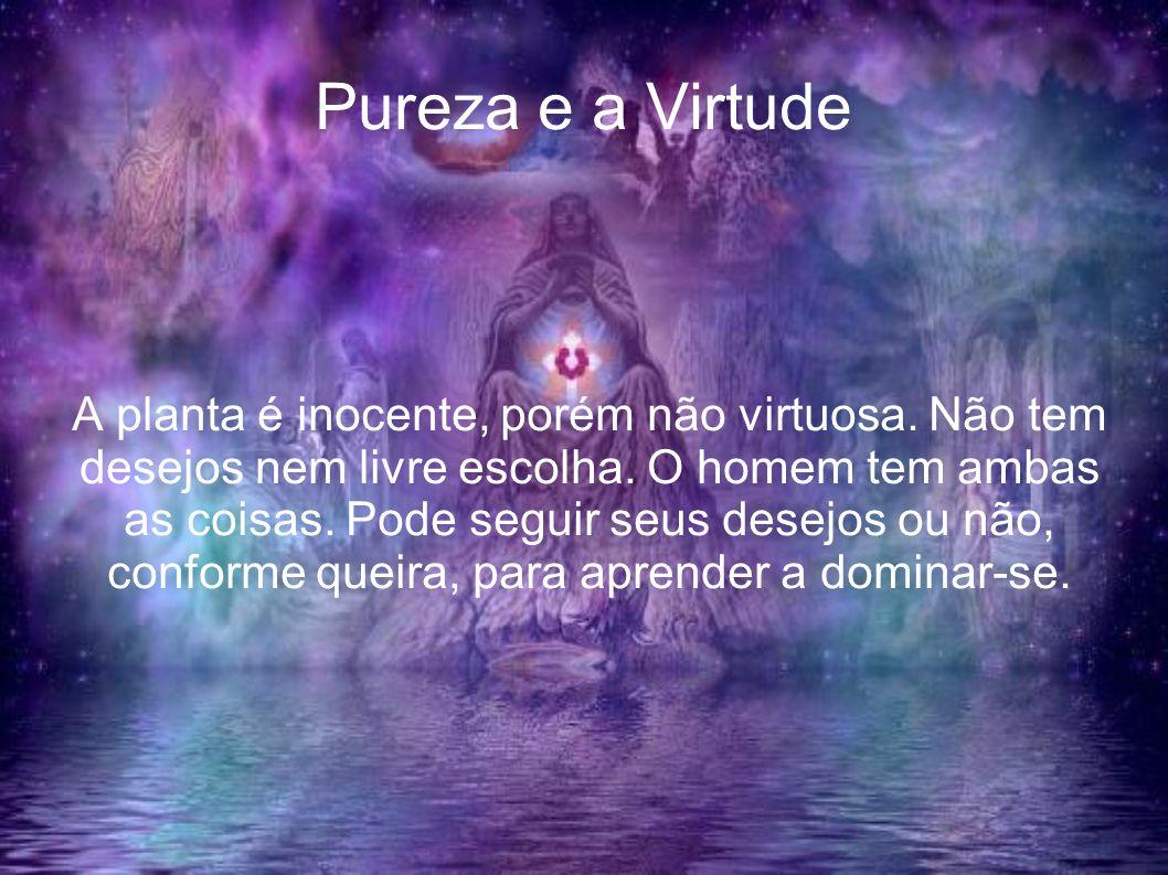 Pureza e a Virtude