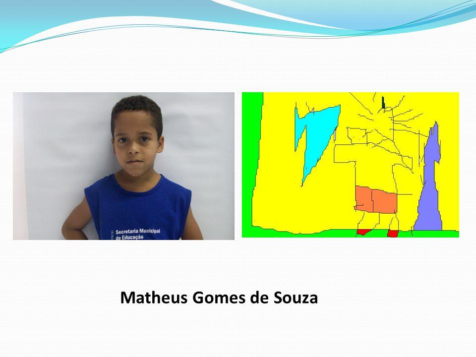 Matheus Gomes de Souza