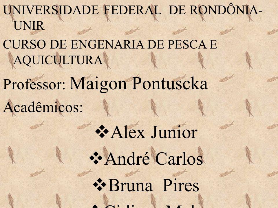 Alex Junior André Carlos Bruna Pires Cidiane Melo
