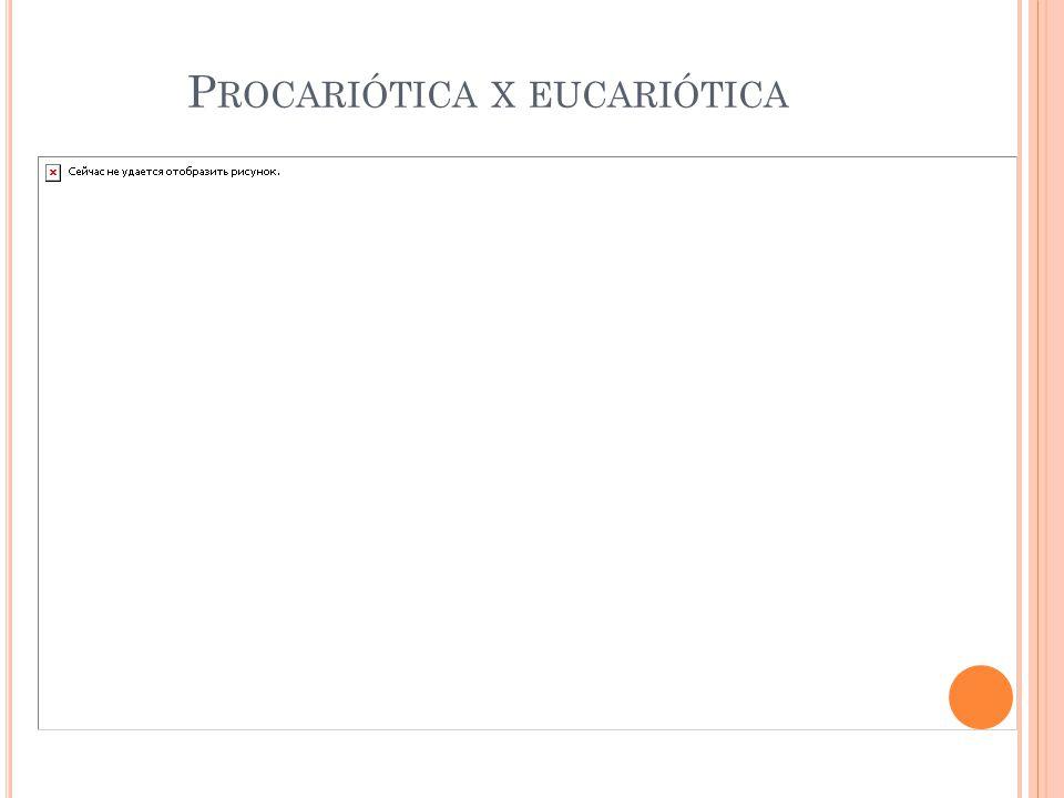 Procariótica x eucariótica