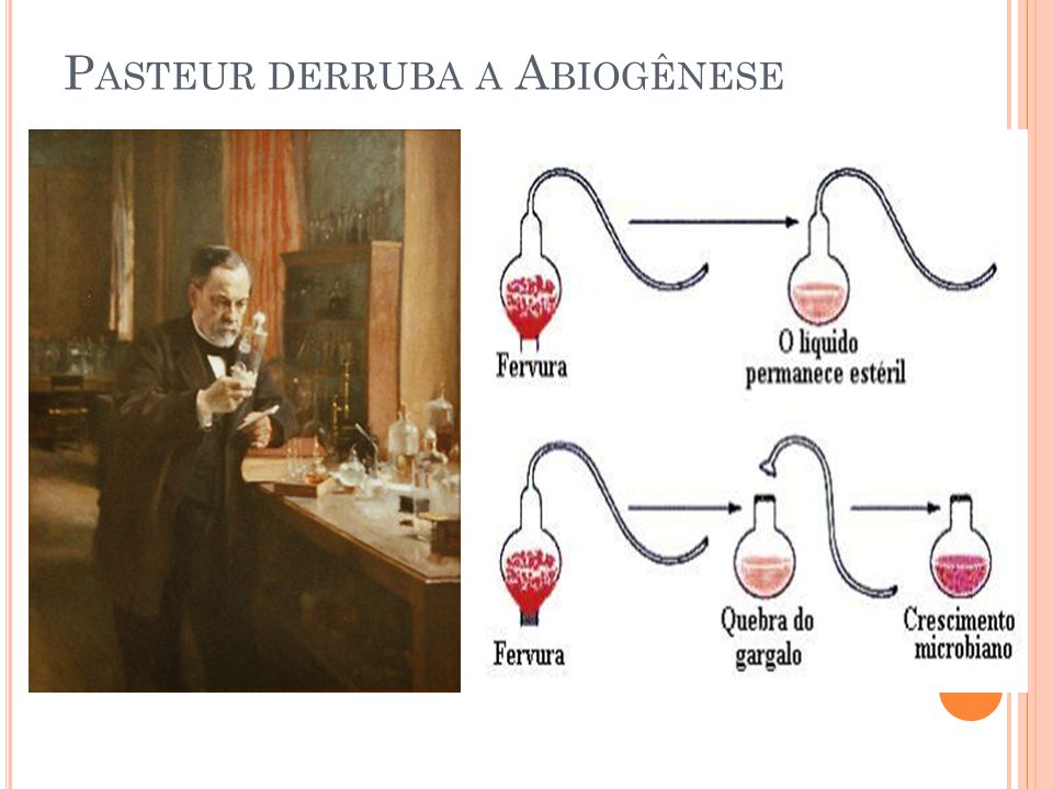 Pasteur derruba a Abiogênese