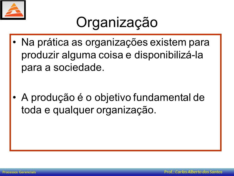 Organização Na prática as organizações existem para produzir alguma coisa e disponibilizá-la para a sociedade.