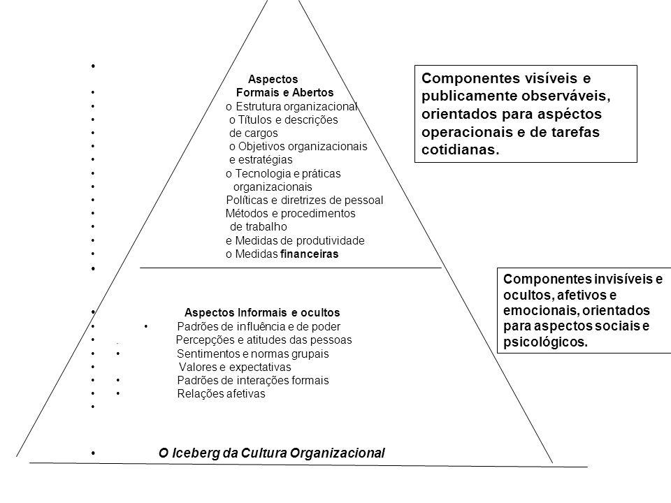 Aspectos Formais e Abertos. o Estrutura organizacional. o Títulos e descrições. de cargos. o Objetivos organizacionais.