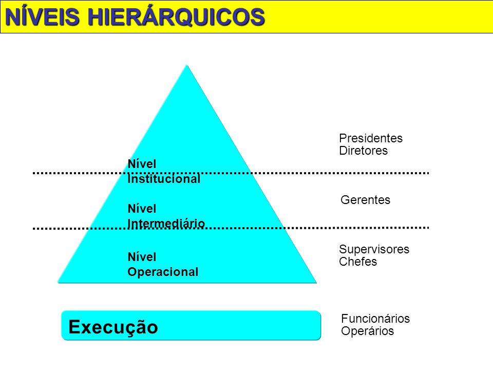 NÍVEIS HIERÁRQUICOS Execução Nível Institucional Presidentes Diretores
