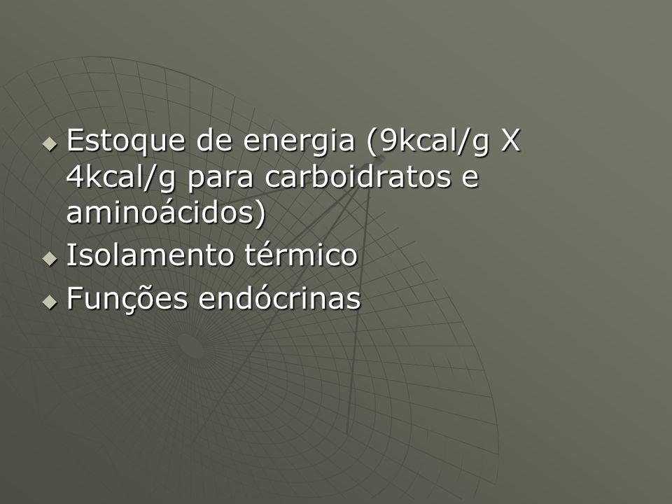 Estoque de energia (9kcal/g X 4kcal/g para carboidratos e aminoácidos)