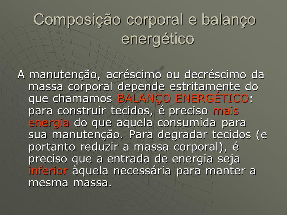 Composição corporal e balanço energético