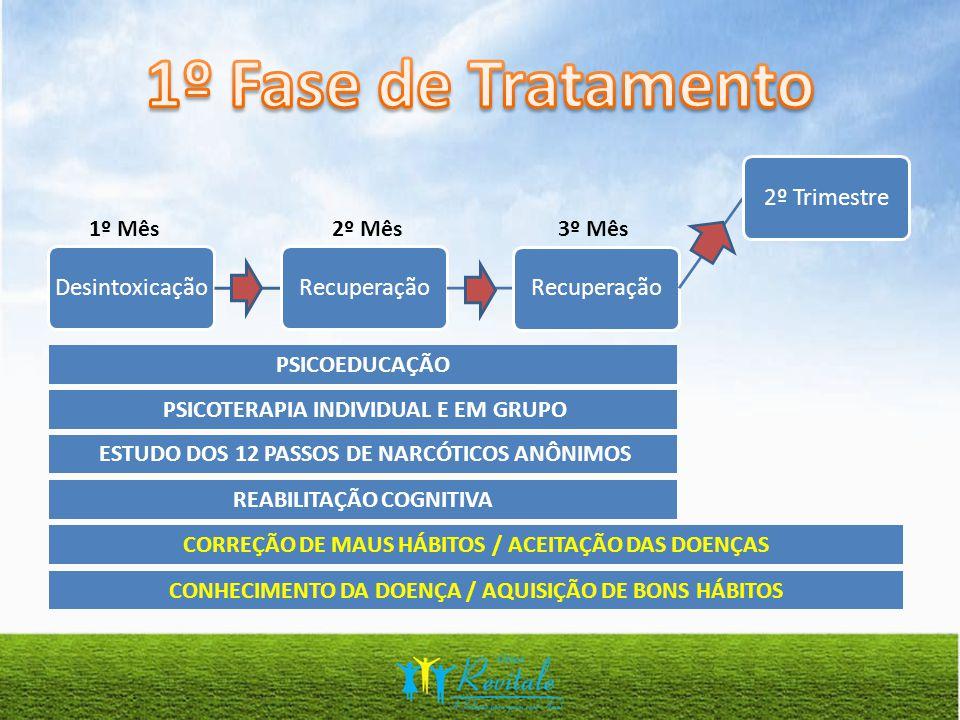 1º Fase de Tratamento 1º Mês 2º Mês 3º Mês PSICOEDUCAÇÃO