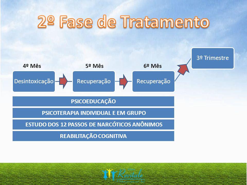 2º Fase de Tratamento Desintoxicação Recuperação 3º Trimestre 4º Mês