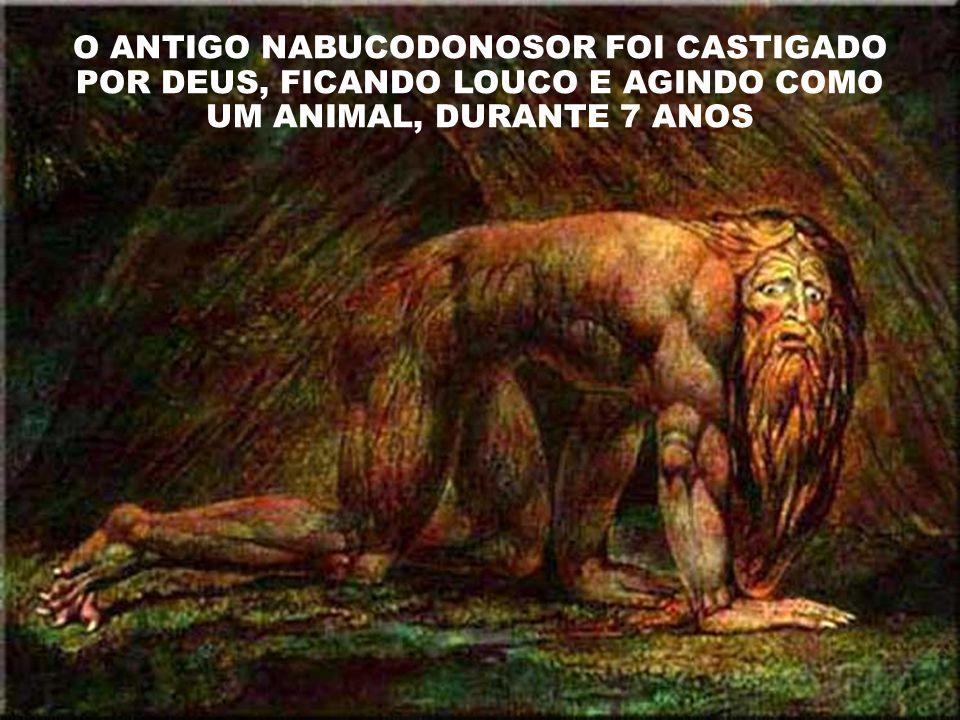 O ANTIGO NABUCODONOSOR FOI CASTIGADO POR DEUS, FICANDO LOUCO E AGINDO COMO UM ANIMAL, DURANTE 7 ANOS