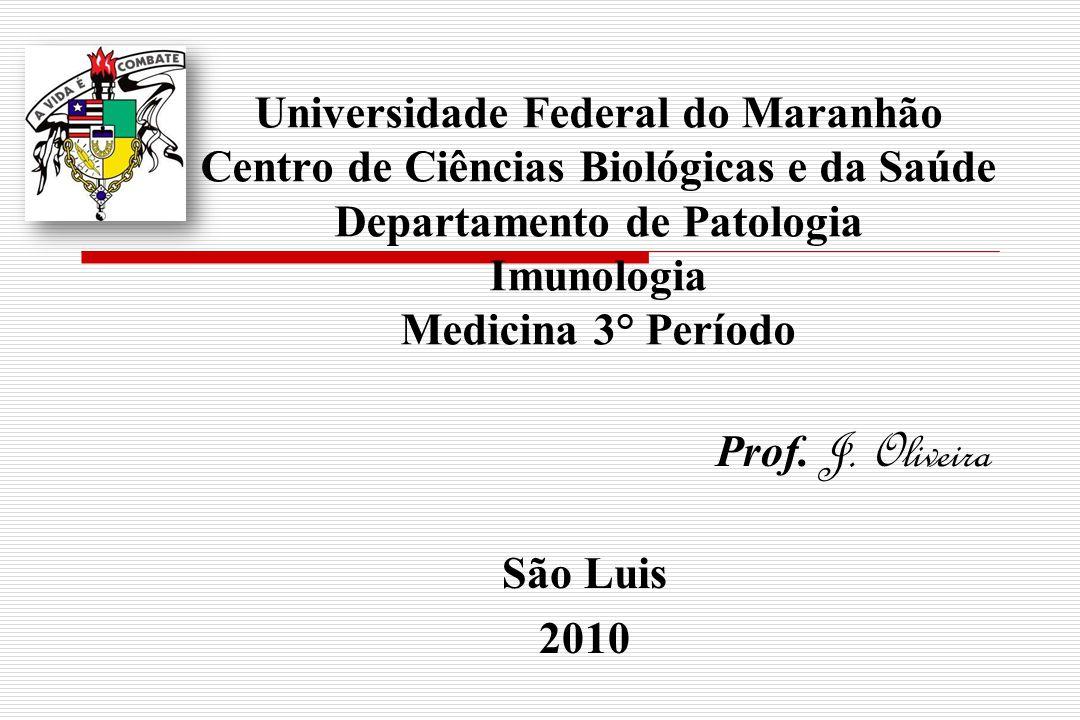 Prof. J. Oliveira São Luis 2010