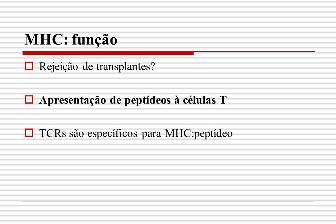 MHC: função Rejeição de transplantes