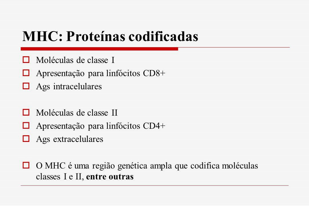 MHC: Proteínas codificadas