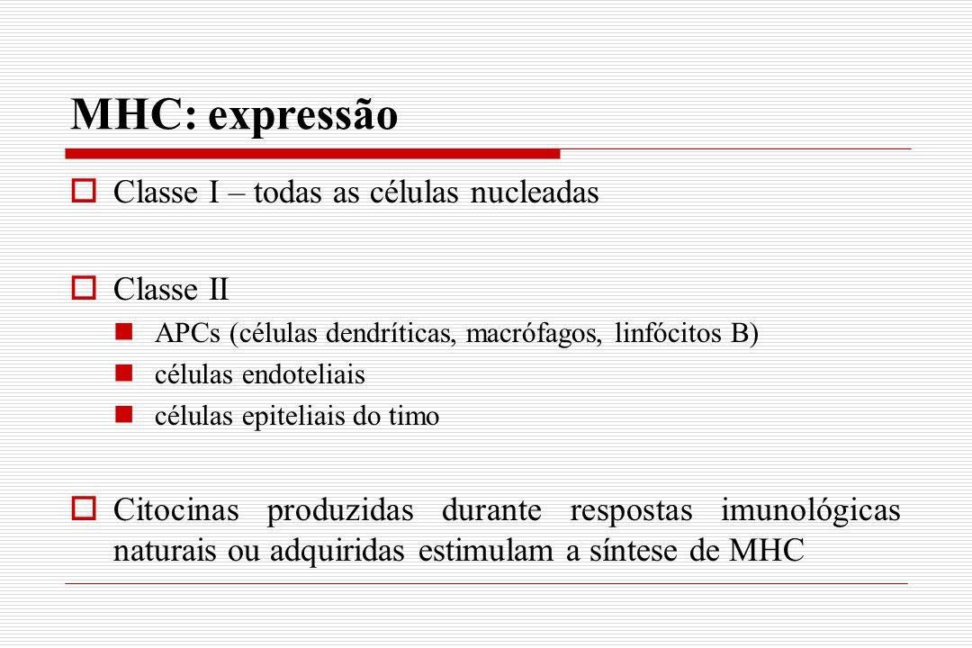 MHC: expressão Classe I – todas as células nucleadas Classe II