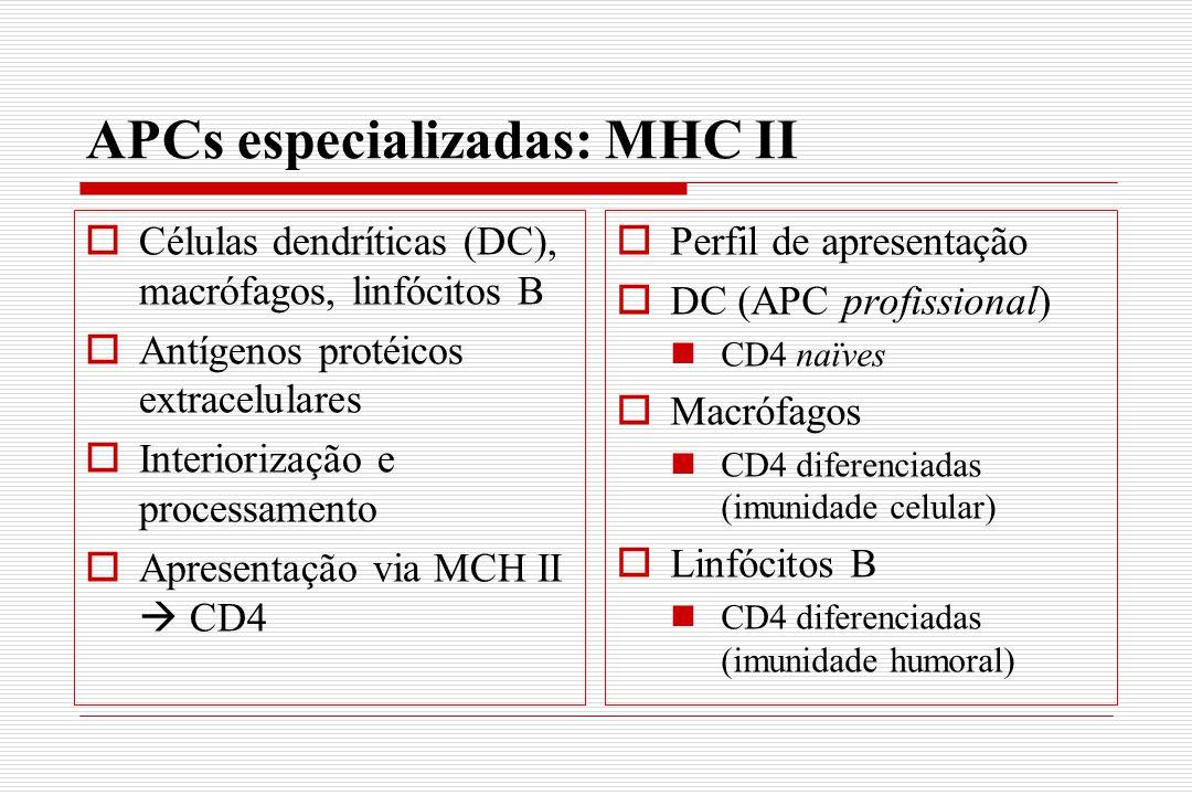 APCs especializadas: MHC II