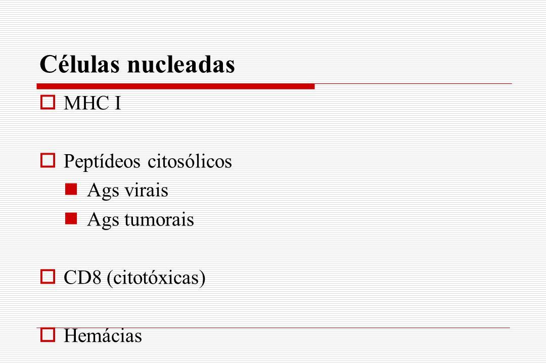 Células nucleadas MHC I Peptídeos citosólicos Ags virais Ags tumorais