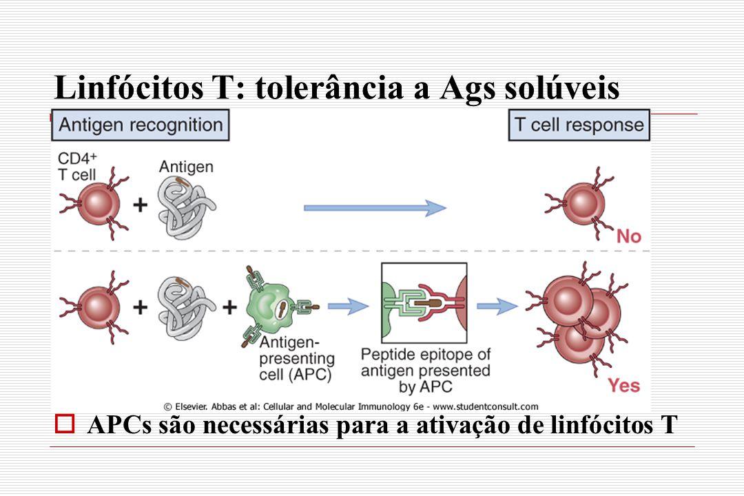 Linfócitos T: tolerância a Ags solúveis