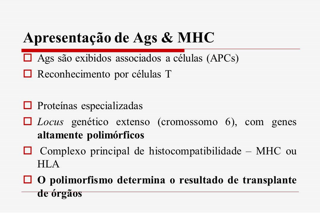 Apresentação de Ags & MHC