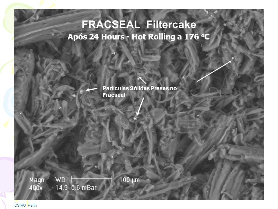 FRACSEAL Filtercake Após 24 Hours - Hot Rolling a 176 oC
