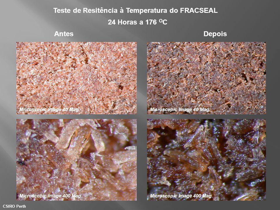 Teste de Resitência à Temperatura do FRACSEAL
