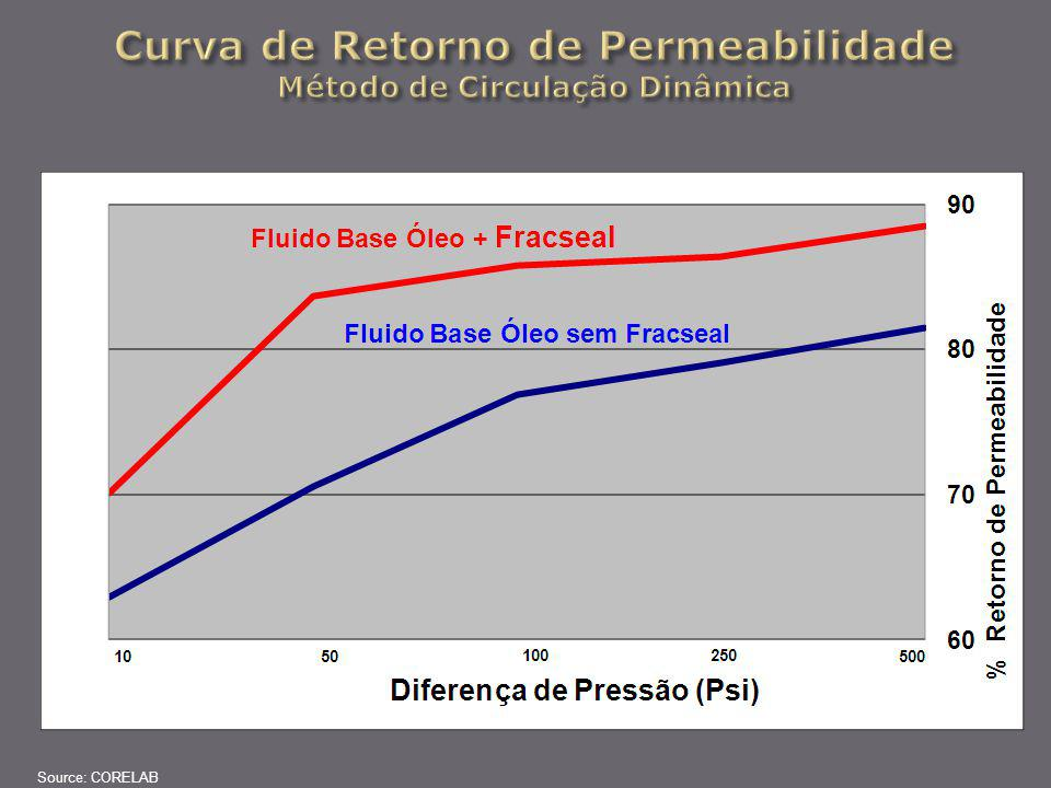 Curva de Retorno de Permeabilidade Método de Circulação Dinâmica