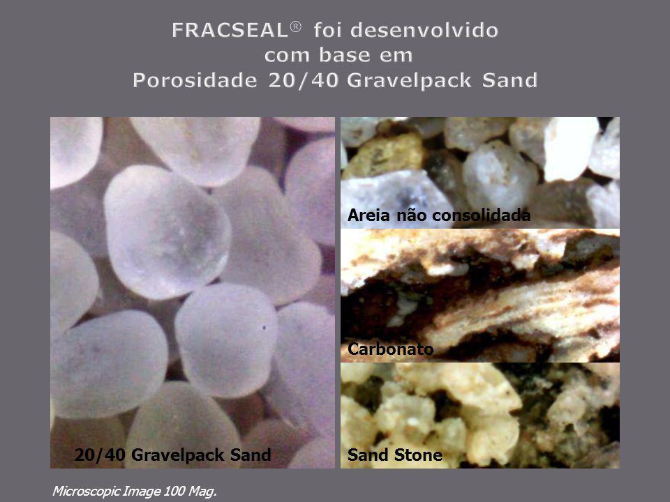 FRACSEAL® foi desenvolvido com base em Porosidade 20/40 Gravelpack Sand