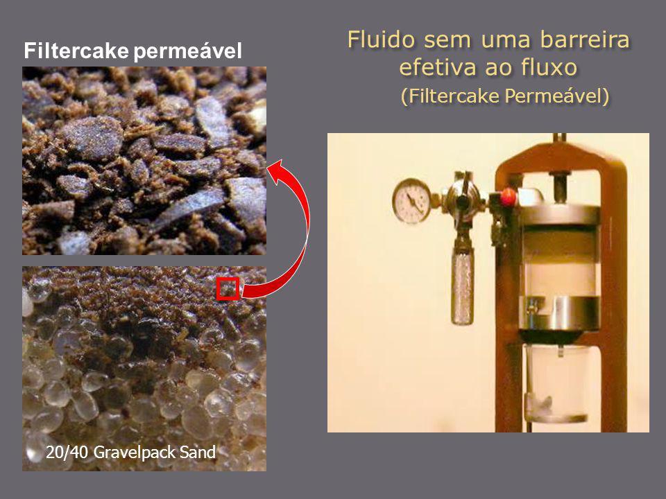 Fluido sem uma barreira efetiva ao fluxo (Filtercake Permeável)
